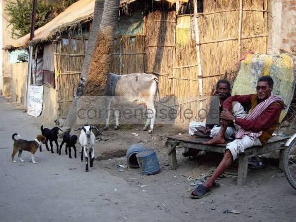 Streetlife Nepal